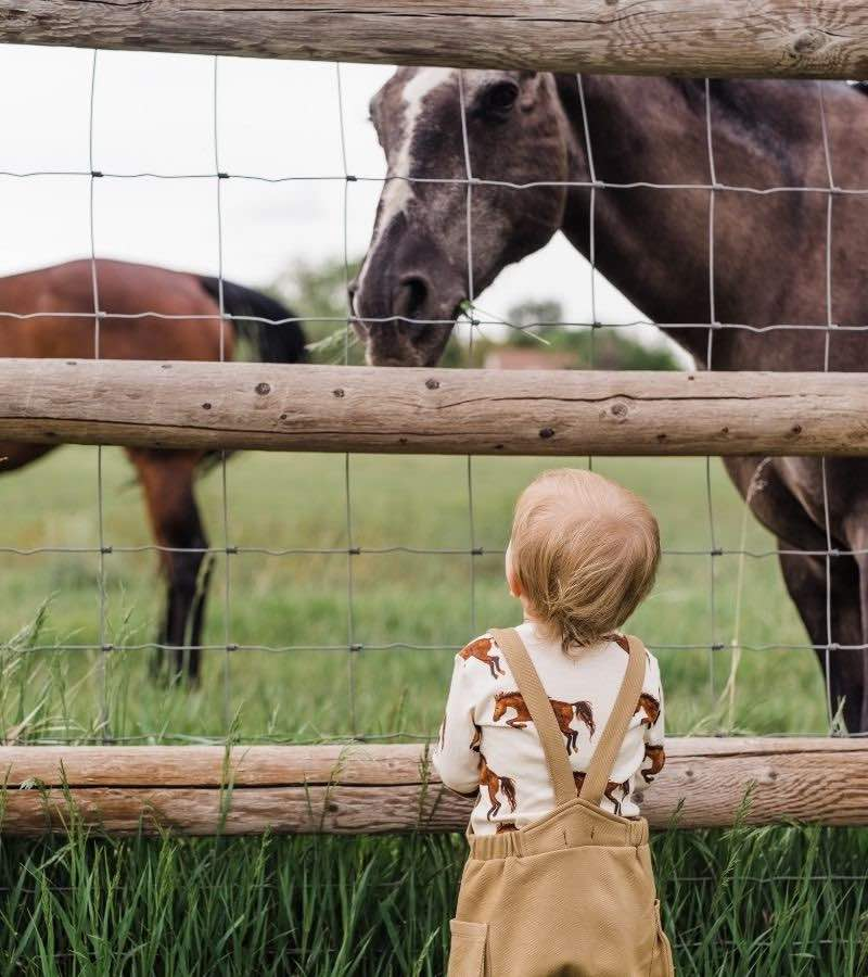 Wholesale SaleLittle Boy in a Horse Field Wearing the Rust Denim Overalls and Organic Long Sleeve One Piece in the Natural Horse Print by Milkbarn Kids